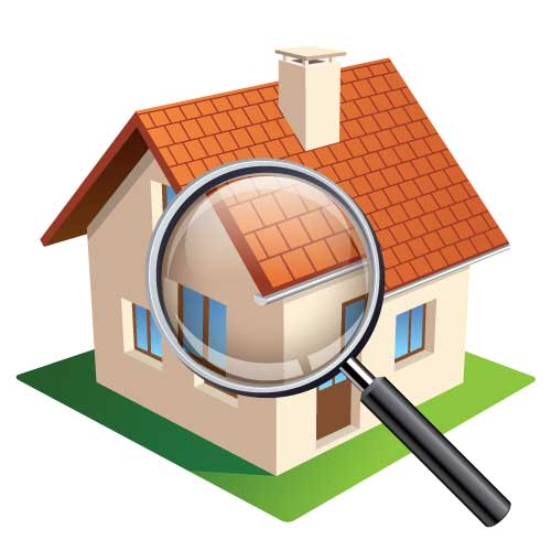 termites and pest control services